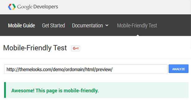 Google Responsive Test