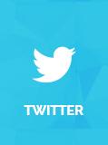 Twitter Social Logo for ThemeLooks